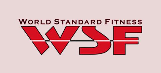 world -standard-itness -logo