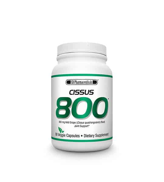 sd-pharmecuticals-cissus-800