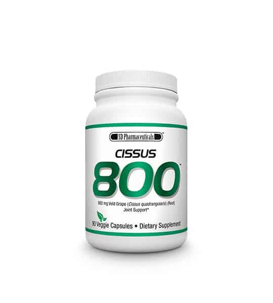 sd-pharmecuticals-cissus-800