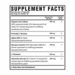 magnum-mane-brain-ingredients