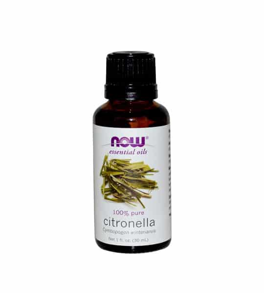Brown and white bottle of Citronella Essential Oil by Now