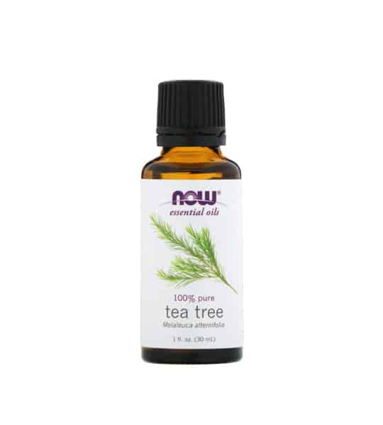 Brown and white bottle of Now essential oils 100% pure Tea Tree Oil 30 ml
